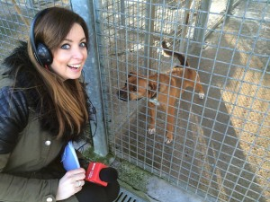 Llinos Lee reports from Llys Nini RSPCA centre at Penllergaer for Clueless.